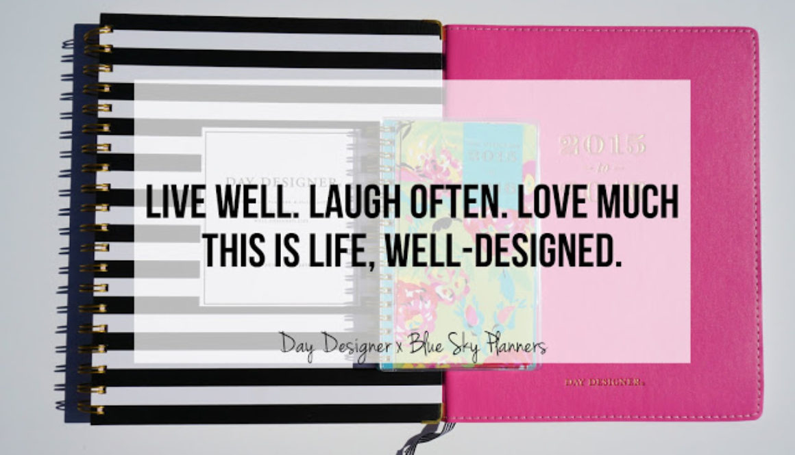 Stay Ready: Day Designer for Blue Sky Planners *Giveaway*